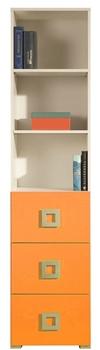 krém + oranžová
